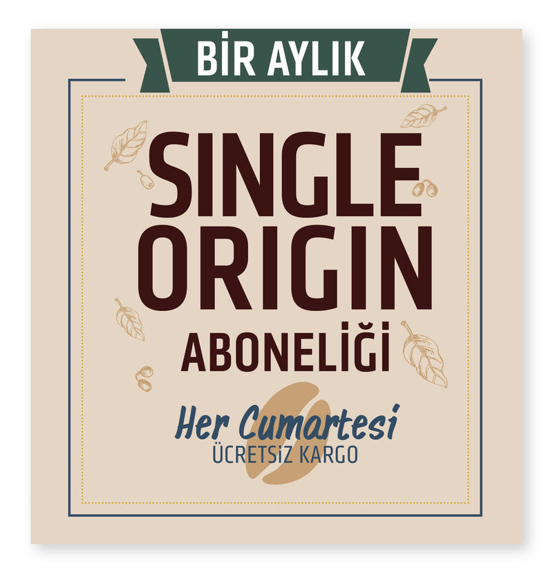 BİR AYLIK SİNGLE ORİGİN ABONELİĞİ