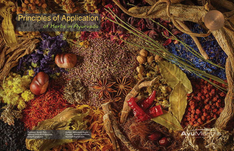 Principles Of Application Of Herbs In Ayurveda