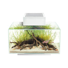 Load image into Gallery viewer, Fluval Edge 2.0 - 23 Litre