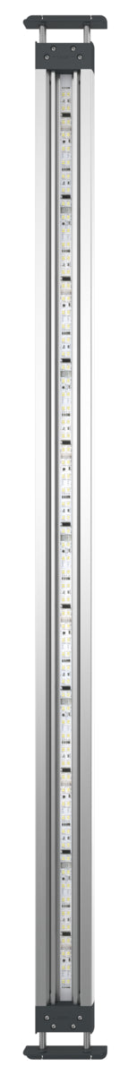 Oase HighLine Premium LED 120