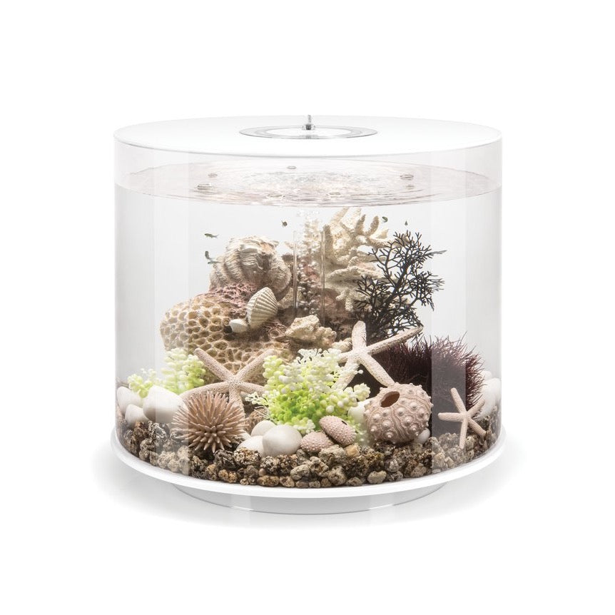 biOrb Tube 35 Litre MCR Aquarium