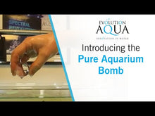 Load and play video in Gallery viewer, Evolution Aqua Pure Aquarium Balls