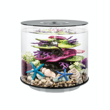 Load image into Gallery viewer, biOrb Tube 15 Litre MCR Aquarium