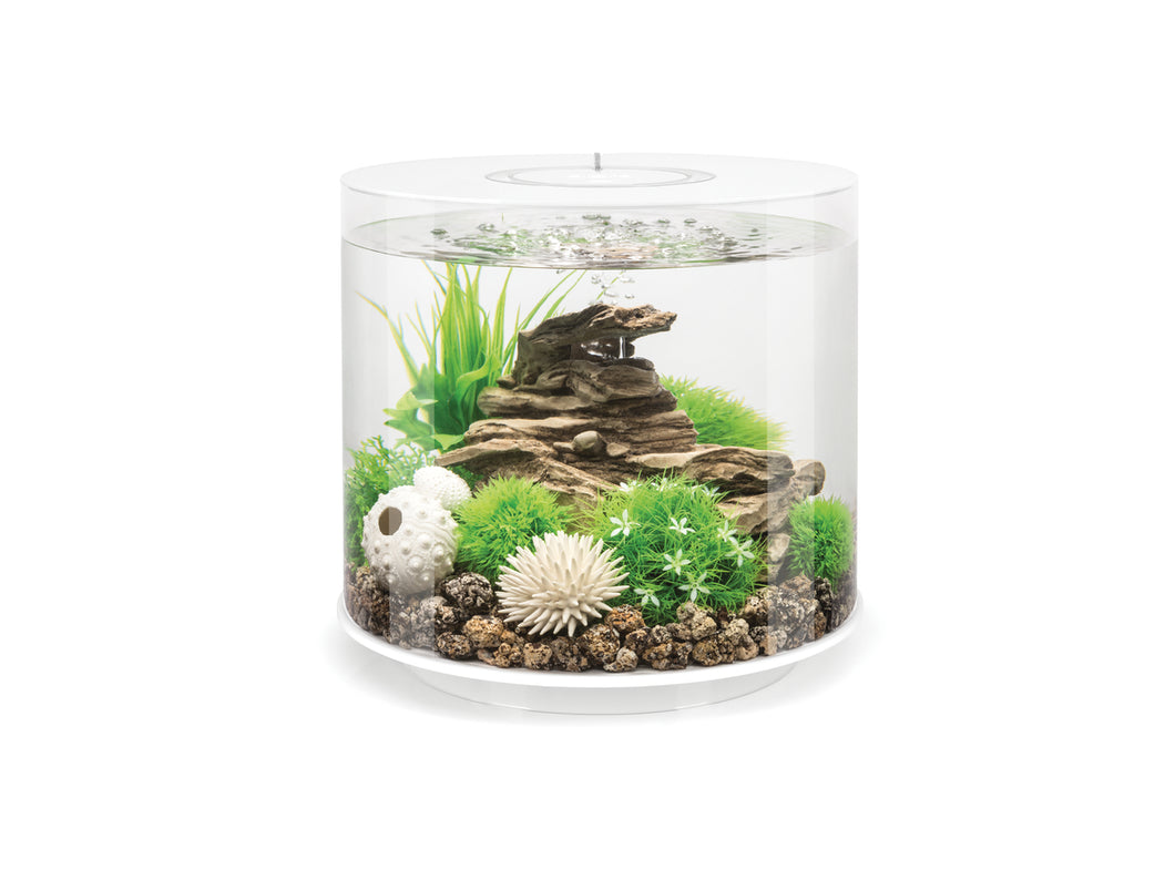 biOrb Tube 15 Litre MCR Aquarium
