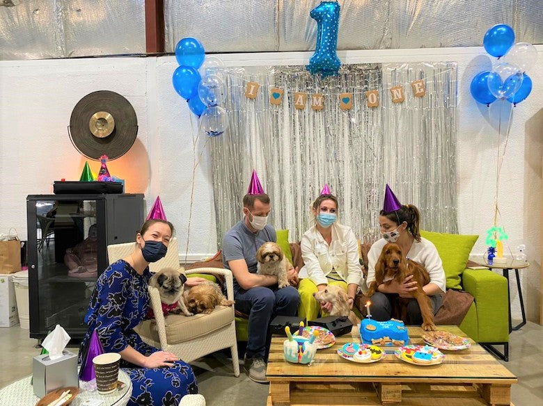 4 people sitting on sofa and sofa chair with their dogs, celebrating dog birthday, surrounded with a lot of decorations