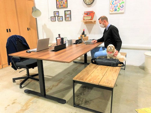 Person sitting on conference table with dog on the bench next to him