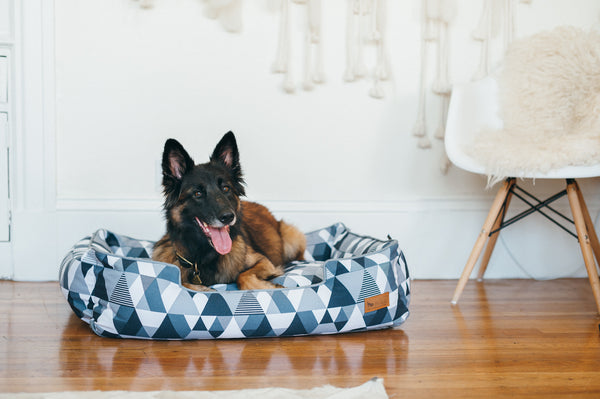 German Shepherd is enjoying P.L.A.Y. Mosaic Tuxedo lounge bed for dogs, next to the white wall, and modern wooden chair, on wooden floor. SKU: PY3016ALF