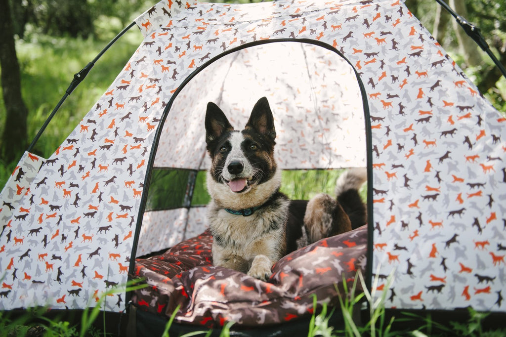 German Sheppard is watching towards camera from P.L.A.Y. Scout & About-Outdoor Tent-Vanilla. Tent is inside forest. SKU: PY6006ASF, GTIN12: 817152015161