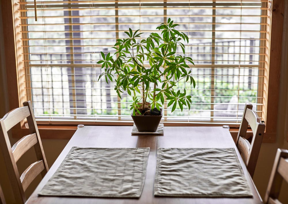 home table blinds in background