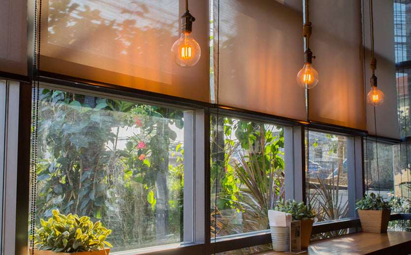 roll blinds filtering sun in coffee shop