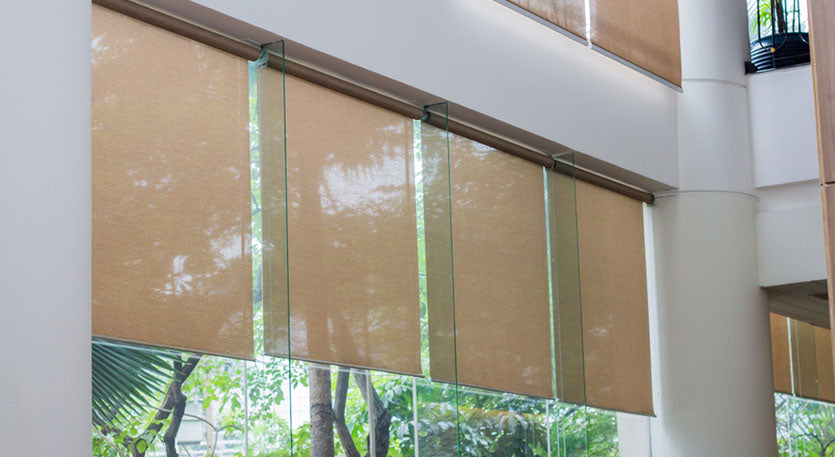 roller shades in office