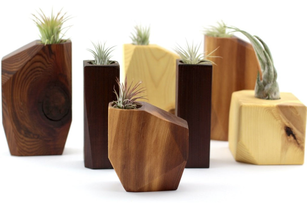Wooden Air planter