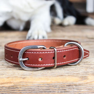 Full Grain Leather Working Dog Collar (Brown)