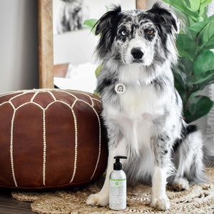 PET OIL: OMEGA-3 + COCONUT OIL