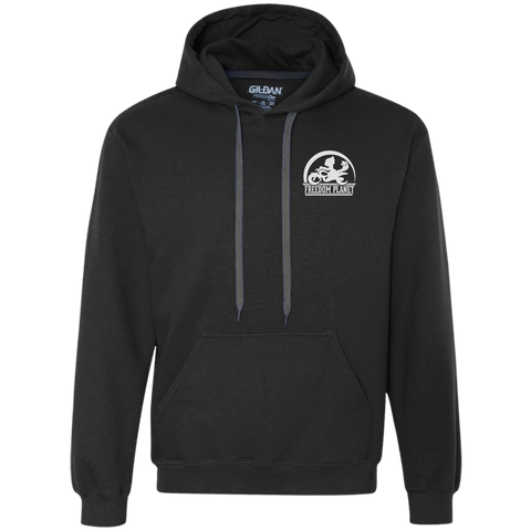 Freedom Planet Hoodie (Black) - Carol - IndieBox