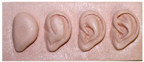 Ear Progression Sculpting Reference by Jack Johnston