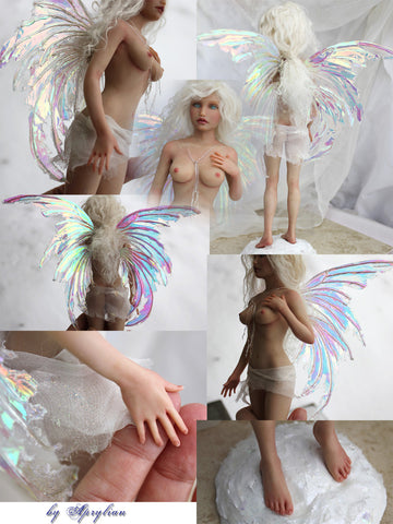 Sculpting a Female Fairy ( 3 DVDs)