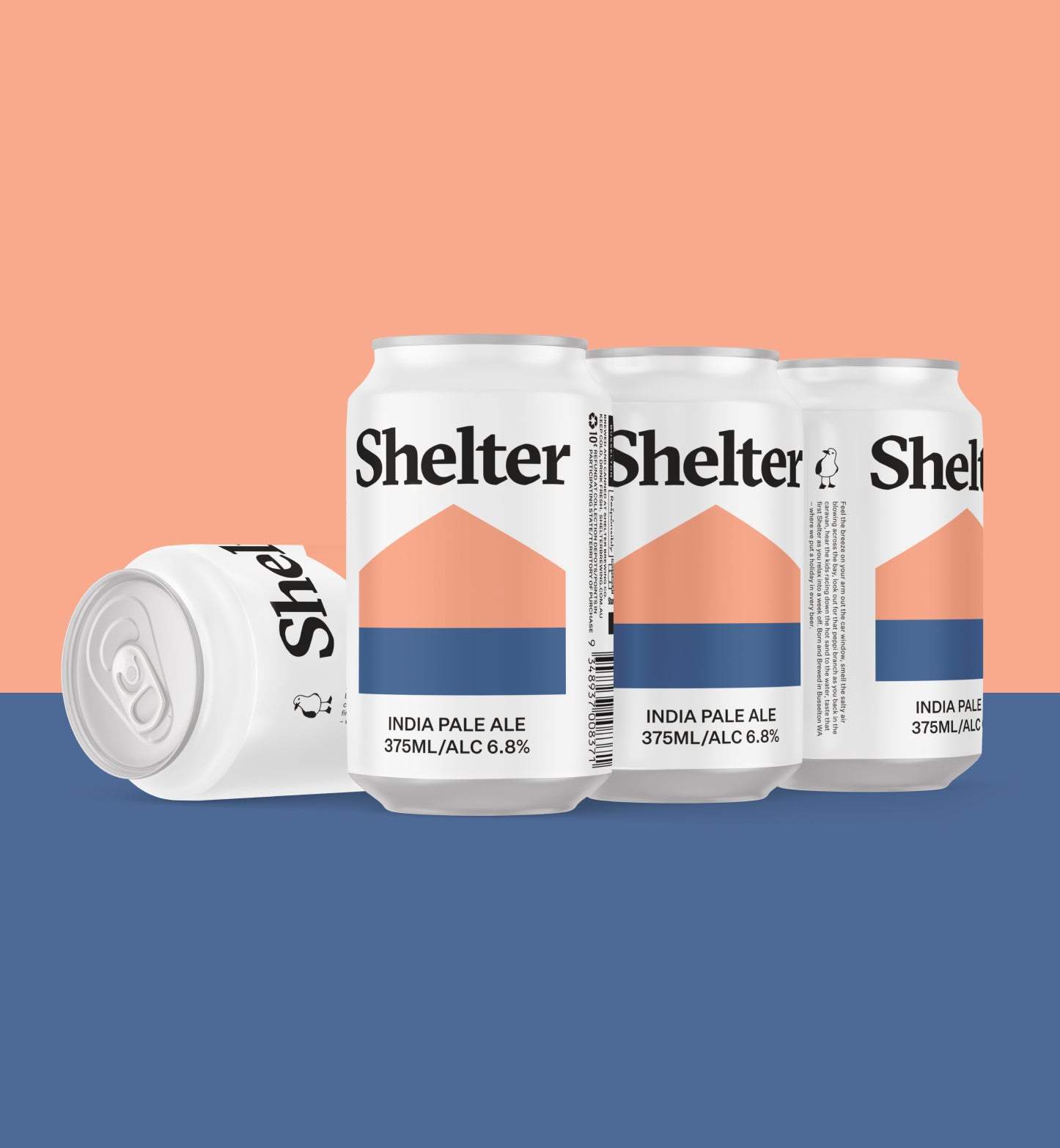 Shelter India Pale Ale