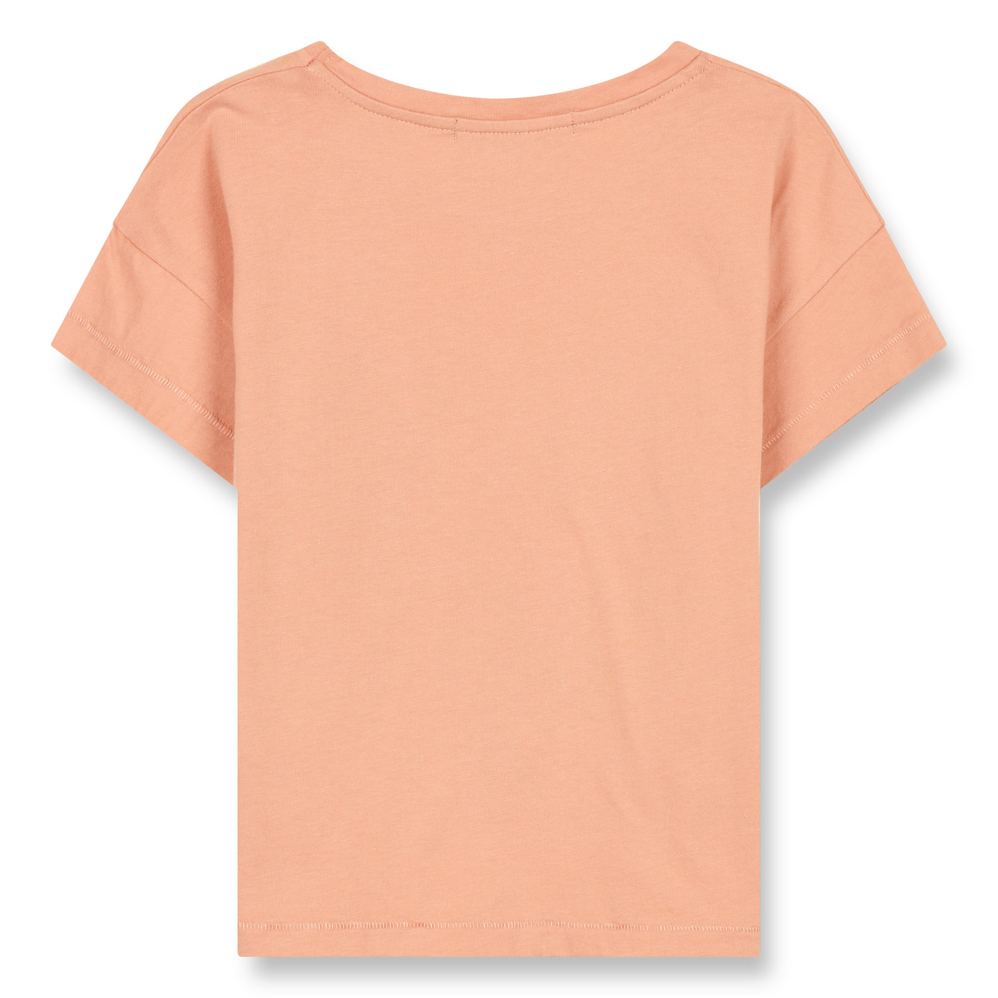 DROP Powder Pink Parrots - Jersey Short Sleeve Cropped T-Shirt 2