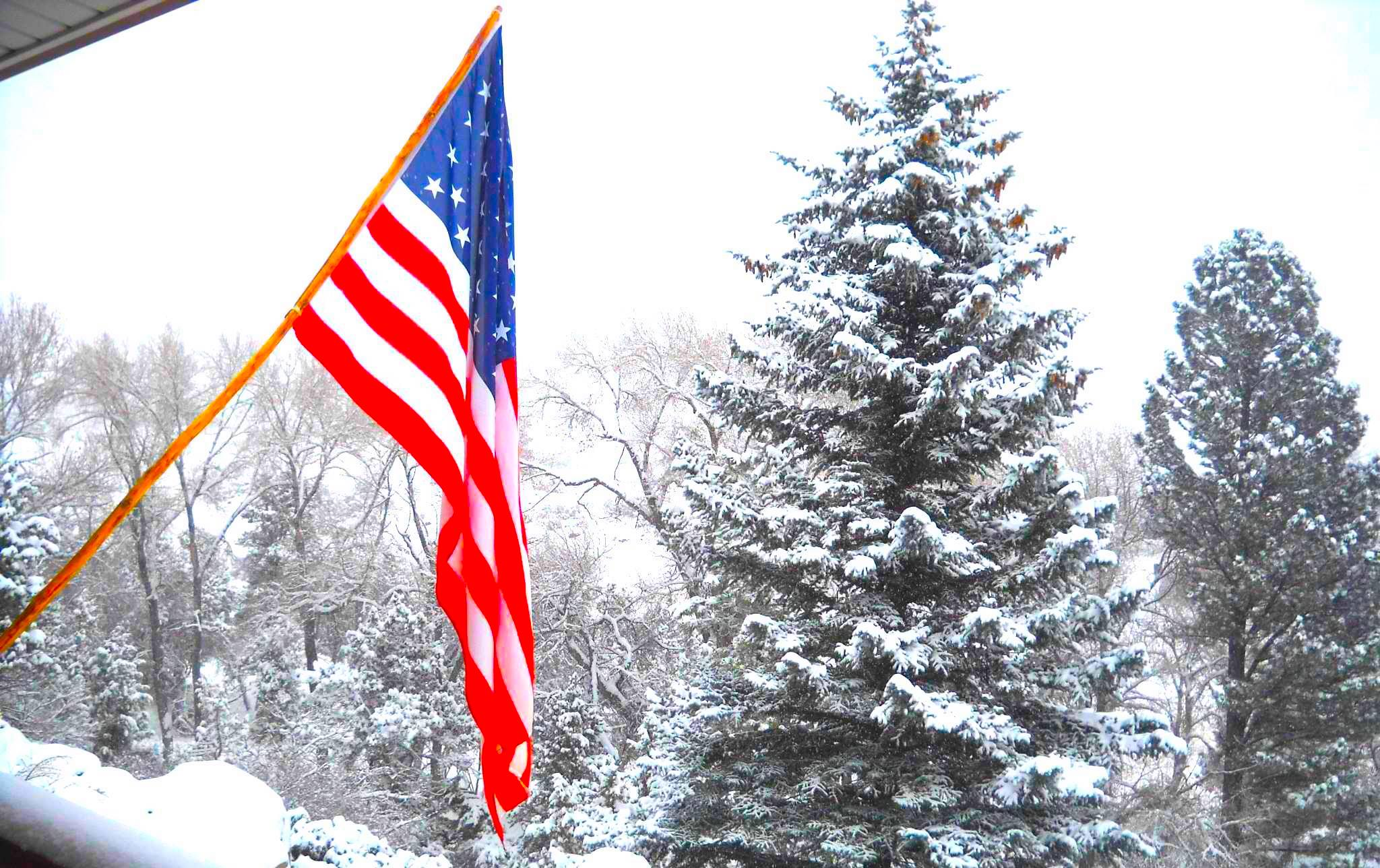 15+ Pictures of the American Flag During Winter