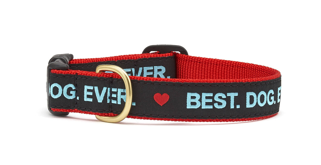 Best. Dog. Ever. Dog Collar