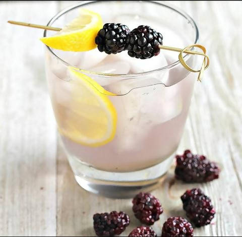 InBooze Blackberry Gin Smash