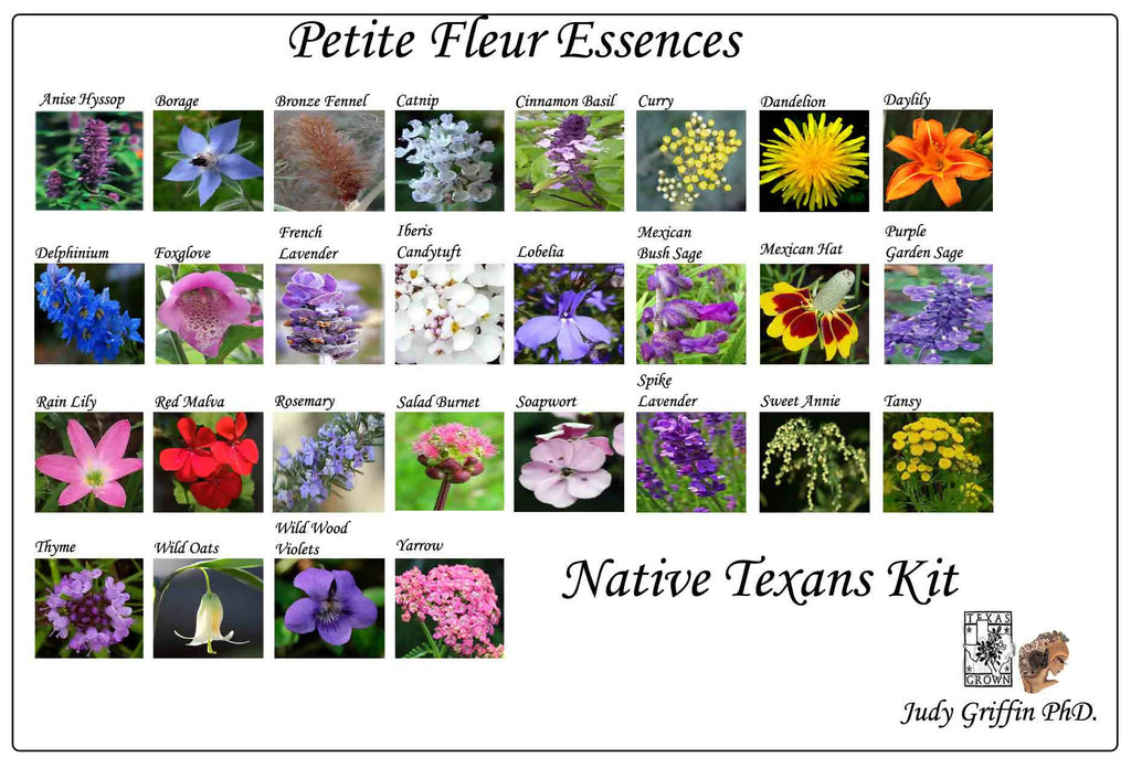 Native Texans Petite Fleur Essence Kit