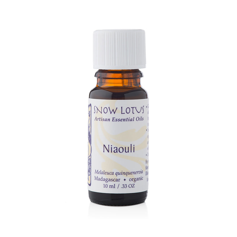 Niaouli essential oil - Snow Lotus - People's Herbs