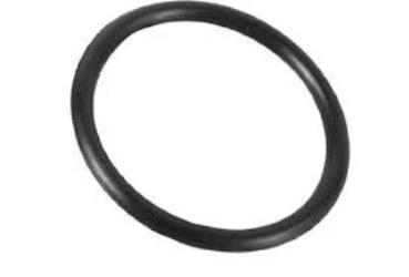Intex Hose O-Ring (5F11)