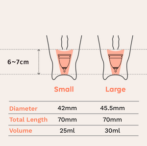EVE menstrual cup sizing guide