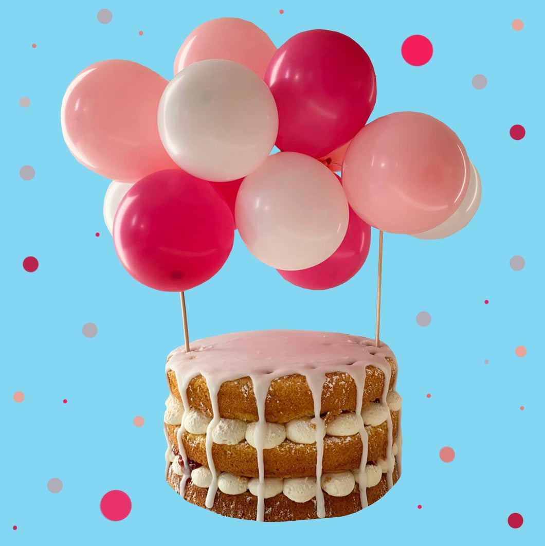 Balloon Cake Kit- Pinks