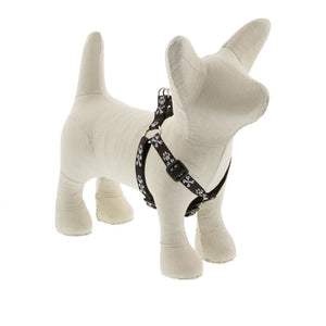 Bling Bonz Harness