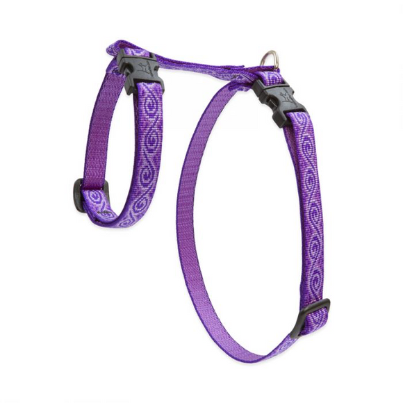 Cat H Harness Jelly Roll