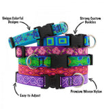 Lupine Jelly Roll Dog Collar