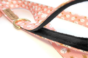 """Pineapples and Blush"" Leash"