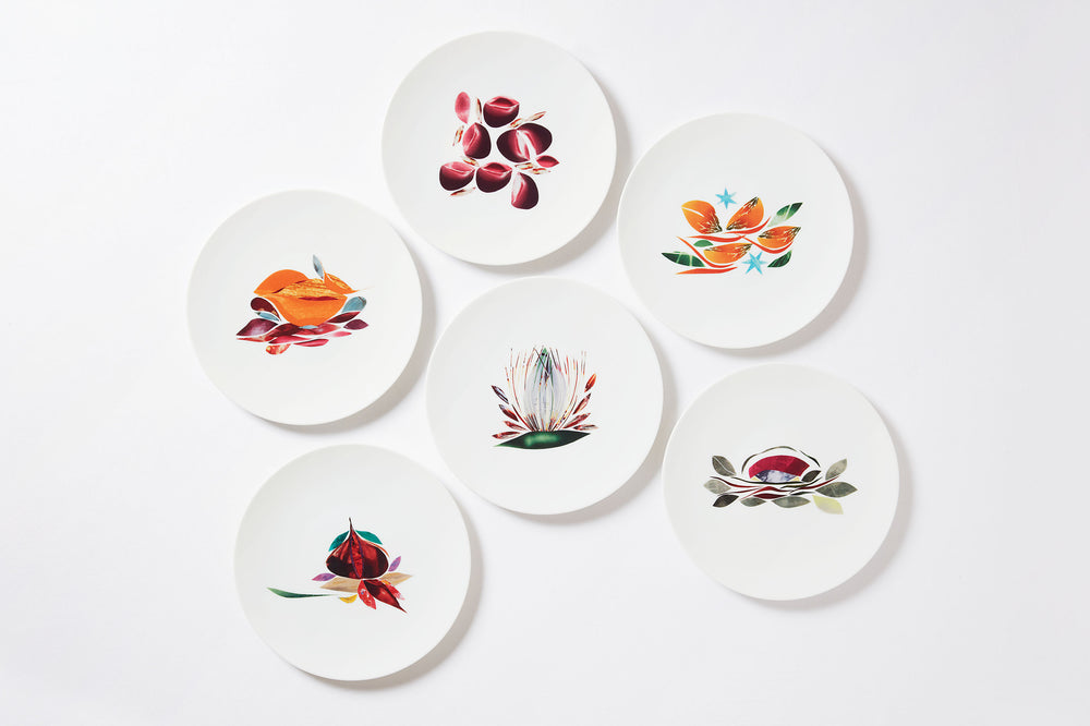"Coffret de grandes assiettes ""Dame Nature"""