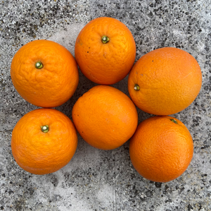 Orange Navel Cambria (1.5kg)