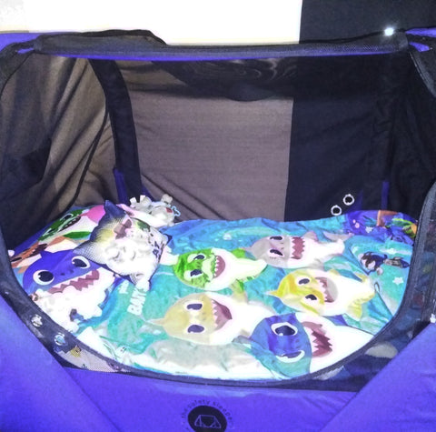 The Safety Sleeper, a fully enclosed bed for children with adults and special needs, with children's bedding.