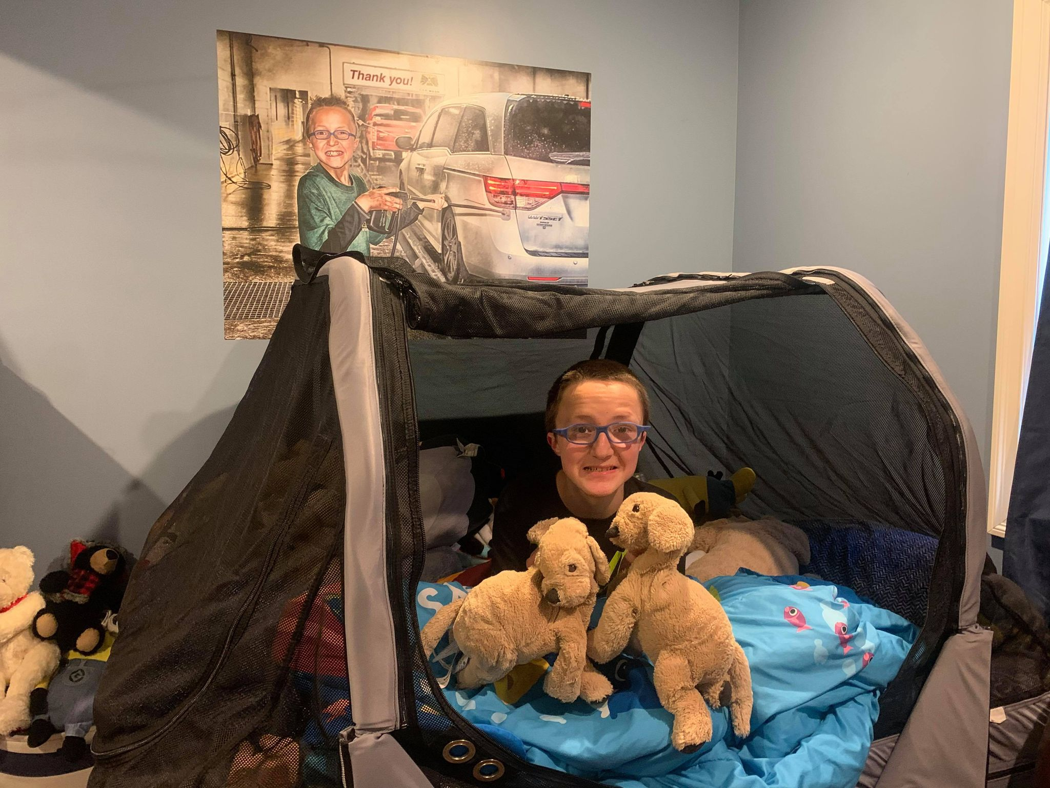 A young boy in his Safety Sleeper enclosed safety bed with two stuffed animals