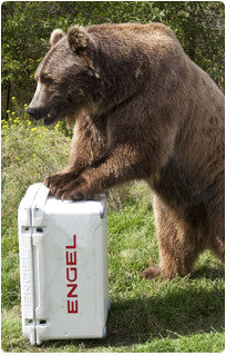 Bear Resistant Containers – Trailhead Supply