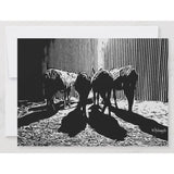 Four Donkeys Notecard