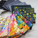 Art Theory Collection | Alison Glass | Fat Quarter Bundle