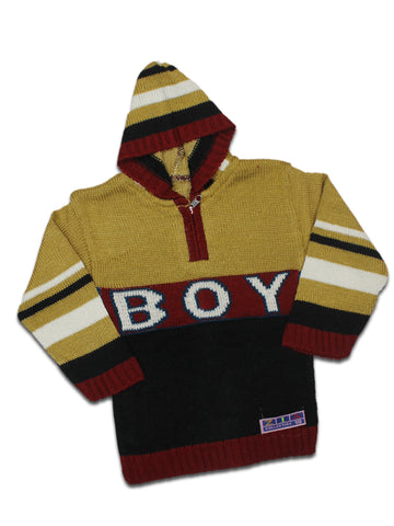 Kids Sweater 1YR - 2YR Boy Light Brown