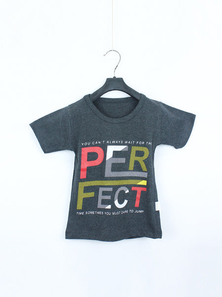 AK1 Boys T-Shirt 1 Yrs - 10 Yrs Perfect Grey