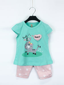 AKC Newborn Baby Suit 3 Mth - 9 Mth Lovely Opaline Green