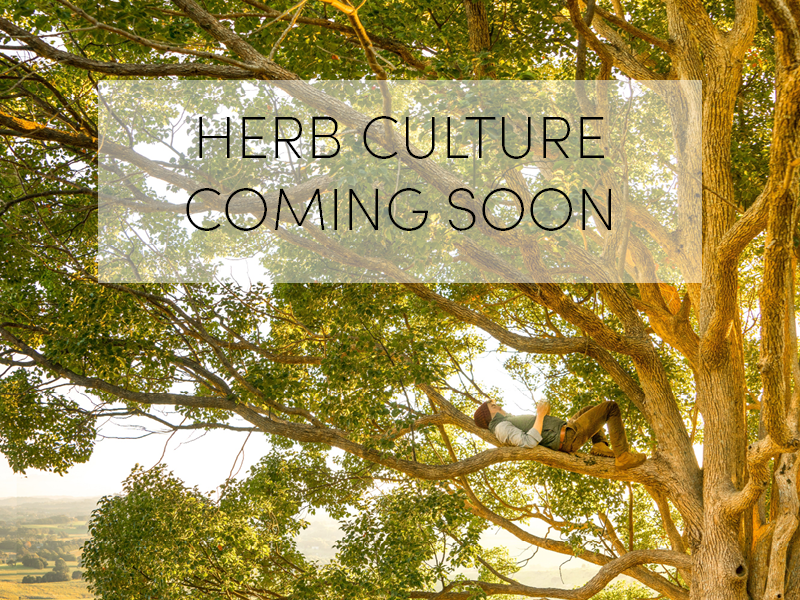 Herb Culture - Coming Soon!