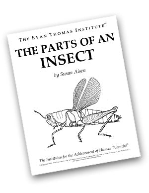The Parts of an Insect ★