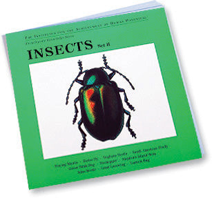 INSECTS, Set II, Bit of Intelligence Cards