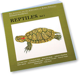 REPTILES, Set I, Bit of Intelligence Cards