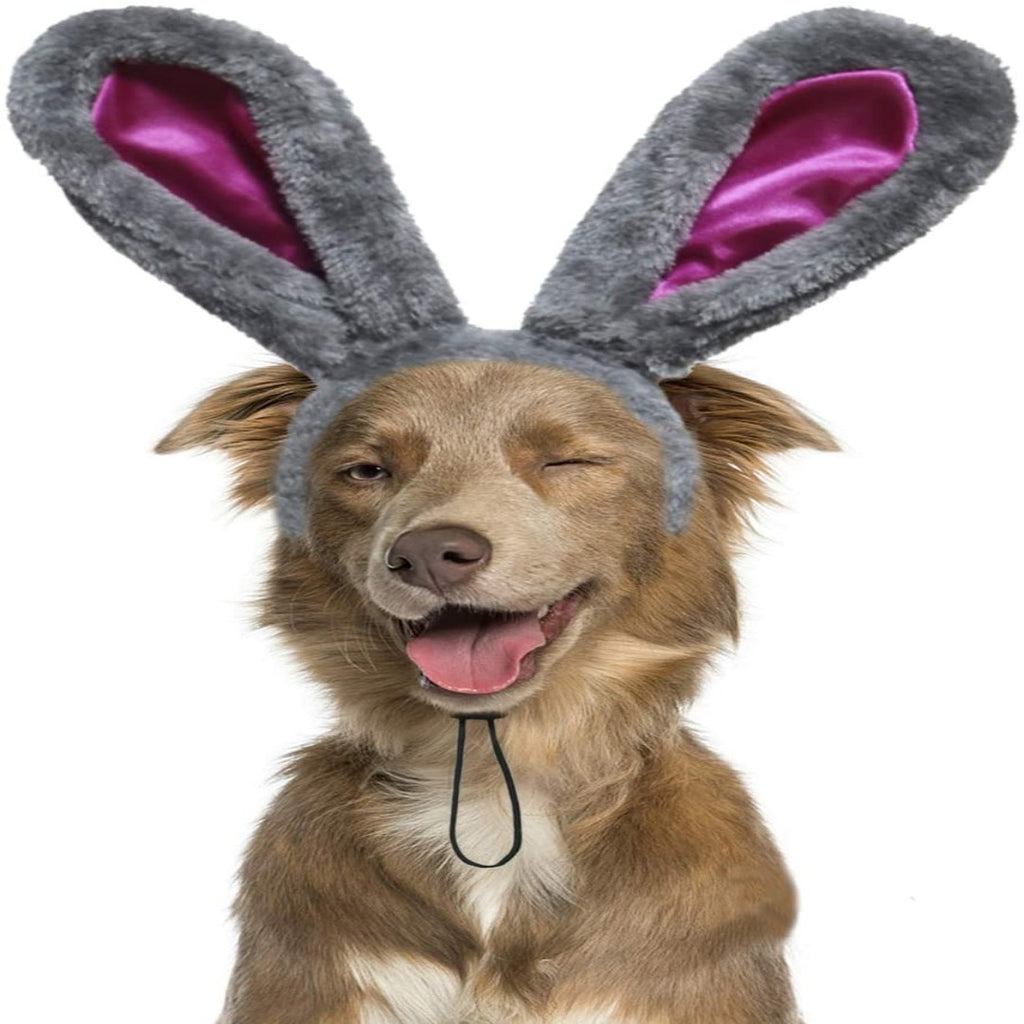'MY EASTER BUNNY EARS SUIT'